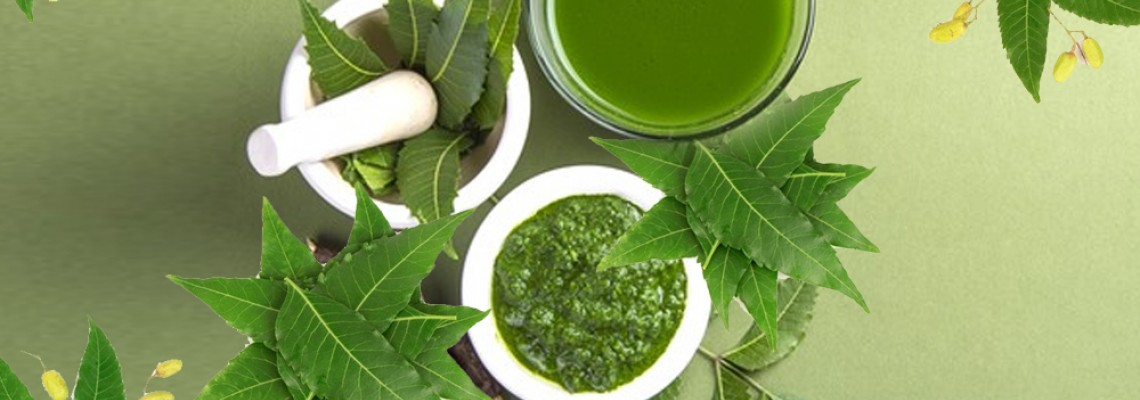 Neem Benefits For a Better Skin and Health